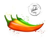 Pimentas de piment?o vermelhas, verdes e amarelas Os vegetais com espirram e deixam cair no fundo branco Ilustra??o do vetor ilustração stock