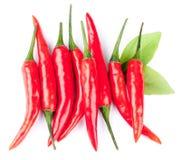 Pimentas de pimentão vermelho quentes Imagem de Stock Royalty Free
