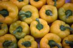 Pimentas de sino brilhantes amarelas brilhantes que enchem a imagem para um fundo Fotos de Stock