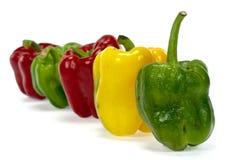 Pimentas de sino doce verdes e alaranjadas vermelhas Imagem de Stock