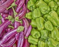 Pimentas de sino e beringelas orgânicas Imagens de Stock
