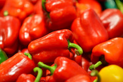 Pimentas de sino vermelhas em um contador no supermercado Um grande número pimentas vermelhas em uma pilha Imagens de Stock Royalty Free