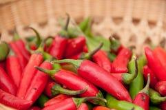 Pimentas do Jalapeno Foto de Stock
