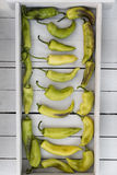 Pimentas doces coloridas brilhantes isoladas no branco fotografia de stock