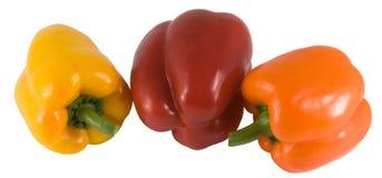 Pimentas doces de três cores Imagens de Stock