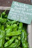Pimentas doces do Skillet de Shisito no mercado da exploração agrícola fotos de stock royalty free