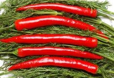 Pimentas e salsa Fotografia de Stock Royalty Free