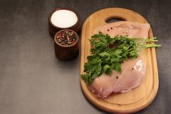 Pimentas e solt da salsa da galinha Imagens de Stock