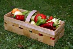 Pimentas em uma cesta Fotos de Stock Royalty Free
