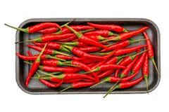 Pimentas encarnados picantes na bandeja preta isolada Fotos de Stock