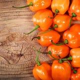 Pimentas extremamente quentes do Habanero em de madeira Foto de Stock Royalty Free