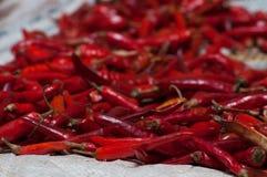 Pimentas frias vermelhas em uma pilha para a venda Imagens de Stock Royalty Free