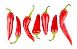Pimentas maduras vermelhas quentes foto de stock royalty free