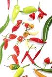 Pimentas misturadas Imagem de Stock