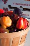 Pimentas na cesta Foto de Stock