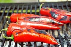 Pimentas orgânicas fotografia de stock royalty free