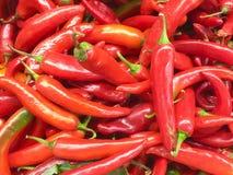 Pimentas para a venda Foto de Stock Royalty Free
