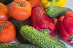 Pimentas, pepinos e tomates encontrando-se na mesa de cozinha Foto de Stock Royalty Free