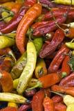Pimentas quentes Foto de Stock Royalty Free