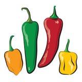 Pimentas quentes Imagem de Stock Royalty Free