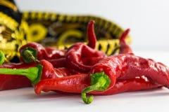 Pimentas quentes Fotos de Stock Royalty Free