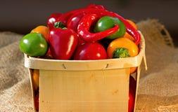 Pimentas quentes e doces Imagens de Stock Royalty Free
