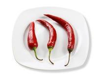 Pimentas quentes na placa Foto de Stock