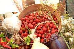 Pimentas redondas vermelhas Fotos de Stock