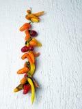 Pimentas secadas Imagem de Stock Royalty Free