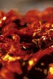Pimentas secadas Guatemala Imagens de Stock Royalty Free