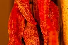 Pimentas secadas outono Fotos de Stock