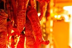 Pimentas secadas outono Imagem de Stock