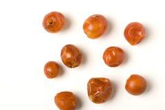 Pimentas selvagens de Chiltepin imagem de stock