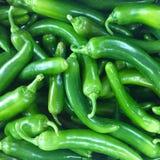 Pimentas verdes Fotografia de Stock Royalty Free