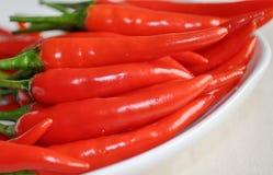 Pimentas vermelhas Imagem de Stock Royalty Free