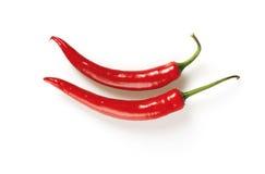 Pimentas vermelhas Imagens de Stock Royalty Free