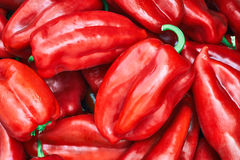 Pimentas vermelhas doces Fotos de Stock