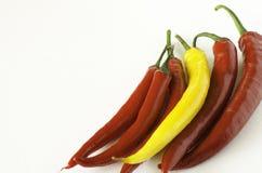 Pimentas vermelhas e amarelas Fotos de Stock Royalty Free