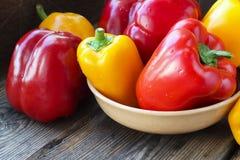 Pimentas vermelhas e amarelas da paprika Foto de Stock Royalty Free