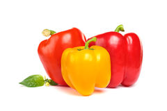 Pimentas vermelhas e amarelas do vegetal - Fotografia de Stock
