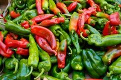 Pimentas vermelhas e verdes Fotografia de Stock
