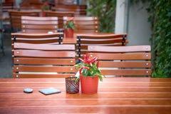 Pimentas vermelhas em uns potenciômetros Café da rua, interior detalhes Erfurt, Alemanha fotografia de stock