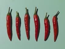 Pimentas vermelhas no verde Fotografia de Stock Royalty Free
