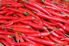 Pimentas vermelhas pequenas Imagens de Stock