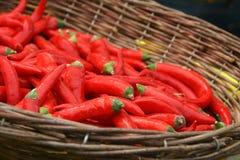 Pimentas vermelhas quentes na cesta Imagens de Stock Royalty Free