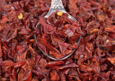 Pimentas vermelhas secadas Fotografia de Stock