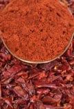 Pimentas vermelhas secadas Foto de Stock