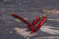 Pimentas vermelhas secadas na ardósia cinzenta Imagens de Stock Royalty Free