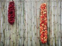 Pimentas vermelhas secas Fotos de Stock Royalty Free