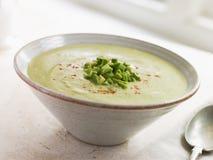 Pimentões do abacate e sopa refrigerados do cominhos Fotos de Stock Royalty Free